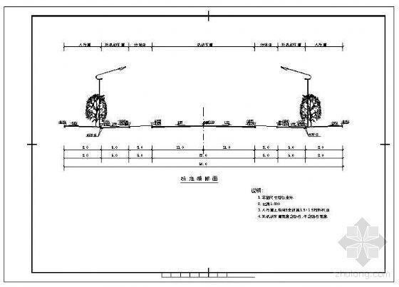 道路标准横断面节点构造详图