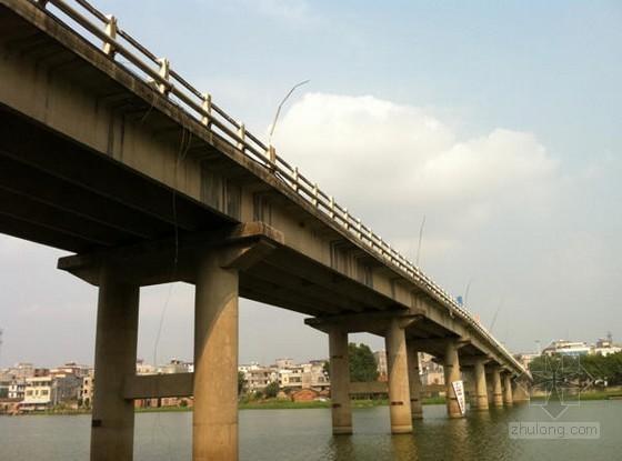 [广东]桥梁拆除工程施工组织设计(技术标)