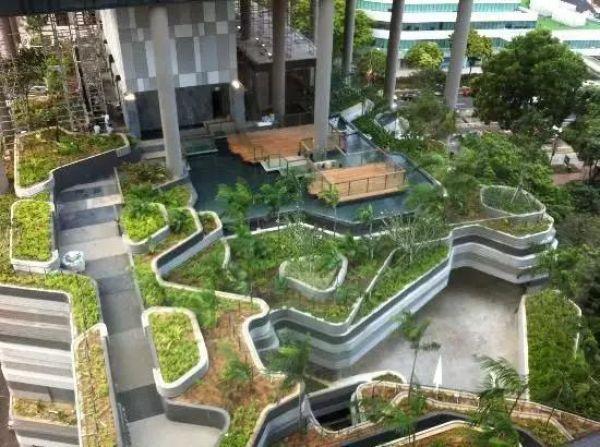屋顶上的园林——屋顶花园景观设计及施工_1