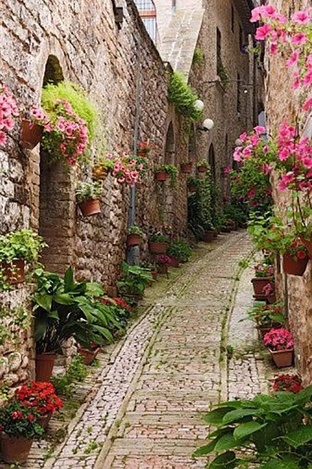 世界上最美的7个鲜花小镇子,这辈子一定要去一次!_16