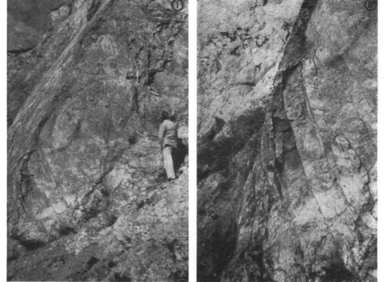 中国地质学(扩编版)扫描版_3