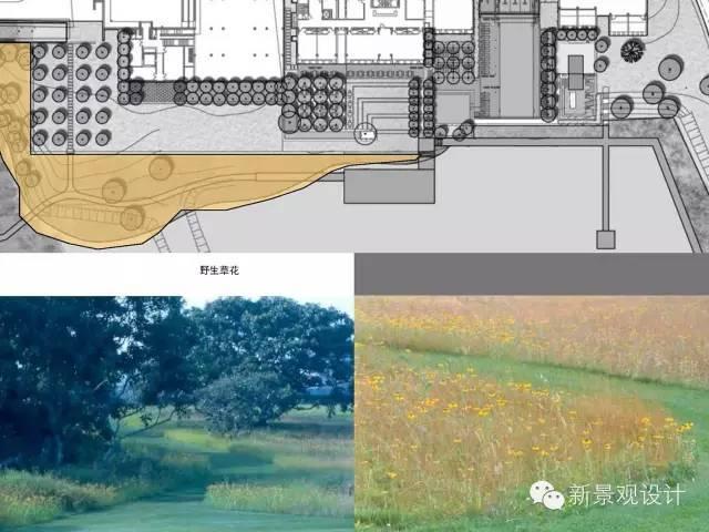 """知名设计院景观设计详细大剖析,转身变""""大牛""""!!_76"""
