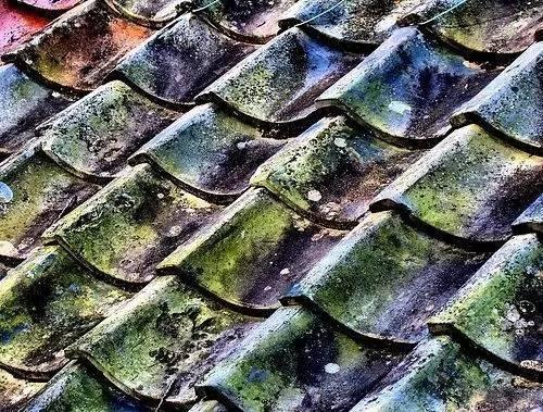 屋顶上的创意丨瓦片_1