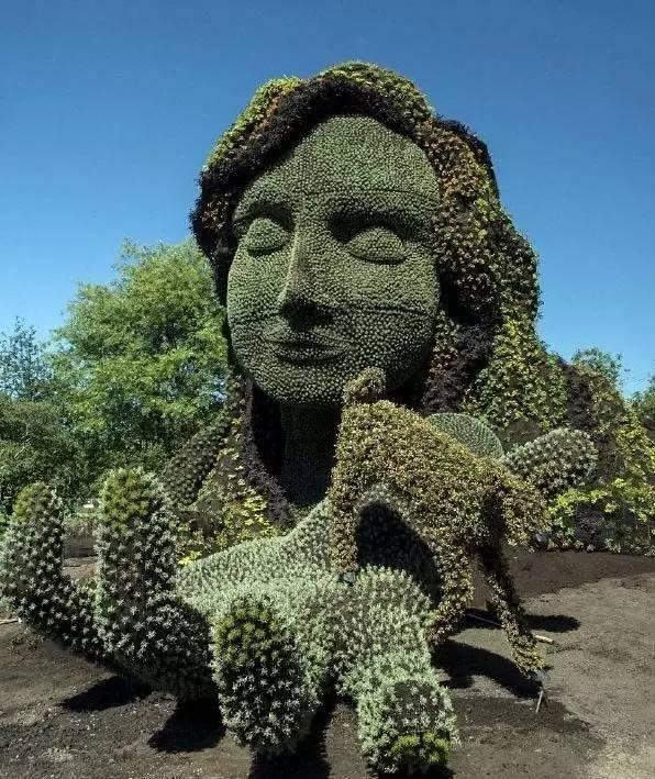 80个极美植物雕塑_50
