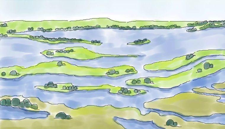 生态设计的宠儿——湿地建设的关键是什么?