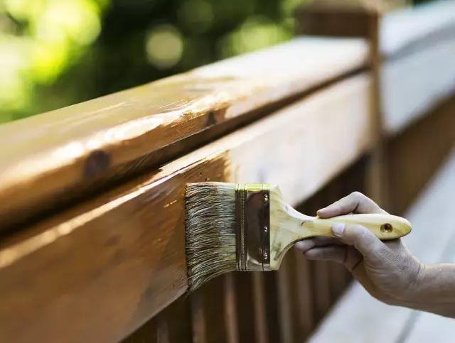 古典园林常用木材解析_7