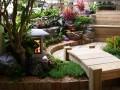 各式庭院常用植物选择