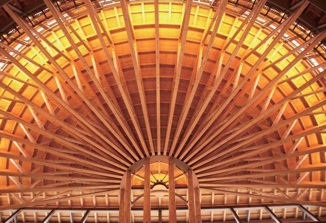 直径44m的半圆形和伞构造支撑起多雪地区的屋顶_18