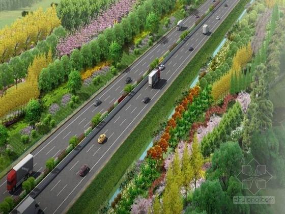 市政道路绿化改造方案总图