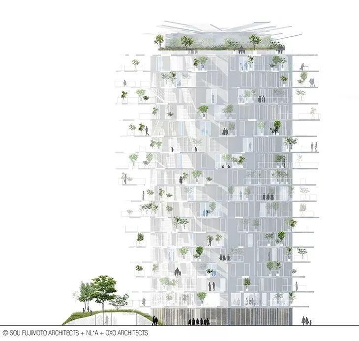 """藤本壮介设计的像树一样的公寓楼建成了,每户都有""""空中花园""""_10"""