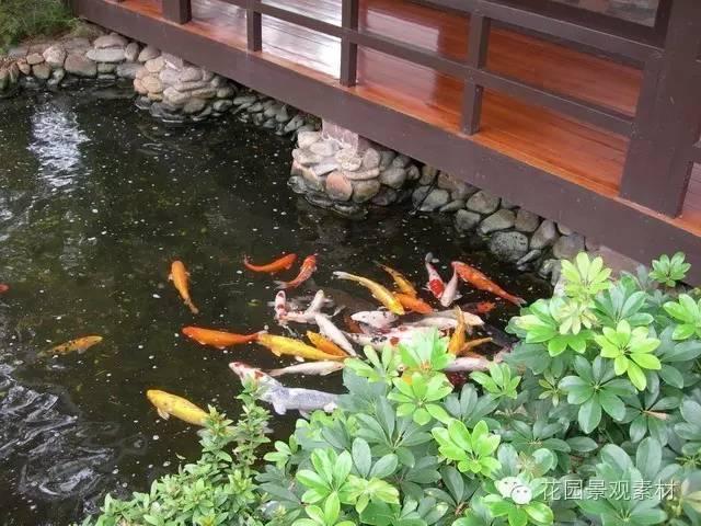 5大关键教你打造日式花园_5