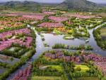 [江苏]无锡阳山·东方田园综合体景观总体规划(PPT+88页)