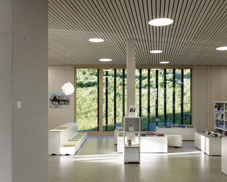 瑞士图书馆和市政府_14