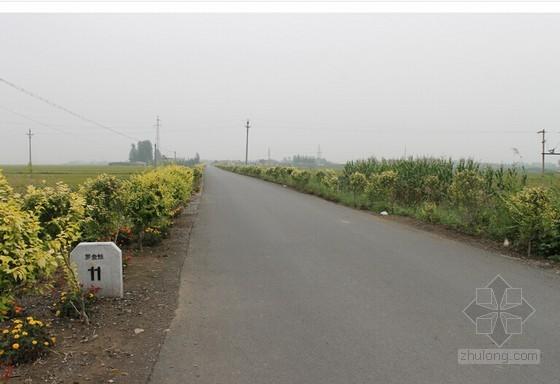 [河南]某农村水泥路工程市政工程监理投标文件