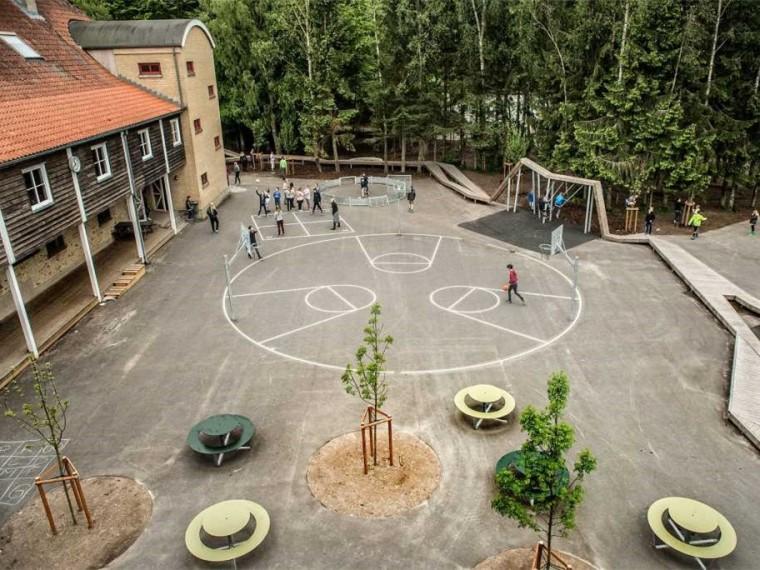 丹麦校园里的神奇树林景观-1