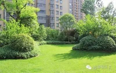 一个会种树的设计师,住宅每平方溢价3000元_4