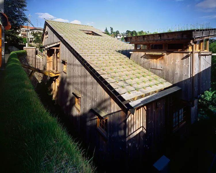 16个日本最佳现代住宅,小而美的空间造就了温暖的家。_24