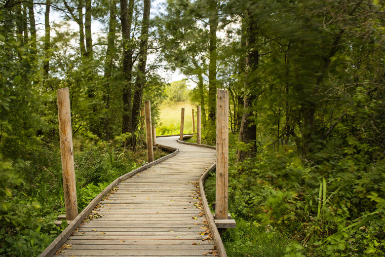 001-nattours-accessible-recreational-path-by-studio-puisto-architects