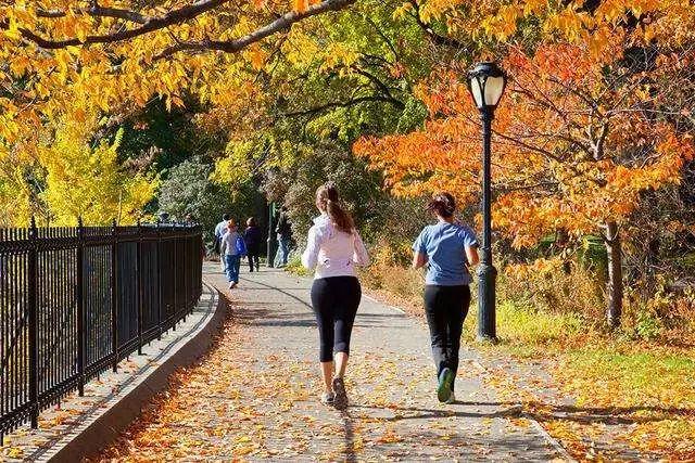 美国景观设计之父|奥姆斯特德和他的纽约中央公园_16