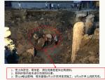 建筑工程塔吊事故分析及处理施工措施(19页)