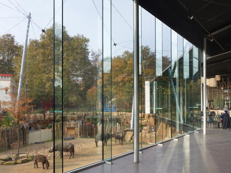 当代Antwerp动物园改建-9