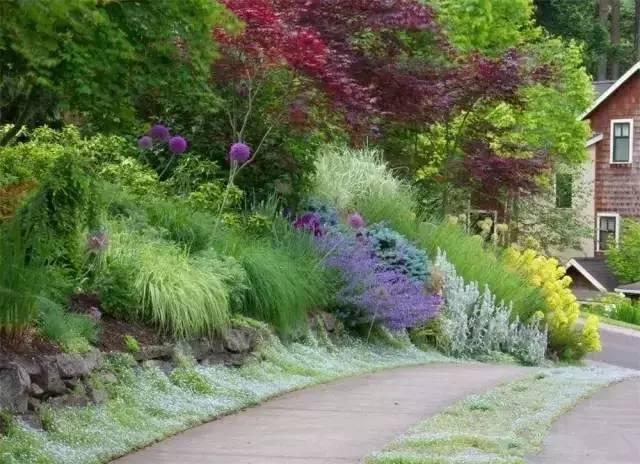 处理坡地景观高逼格方法,种草!种草!!_26