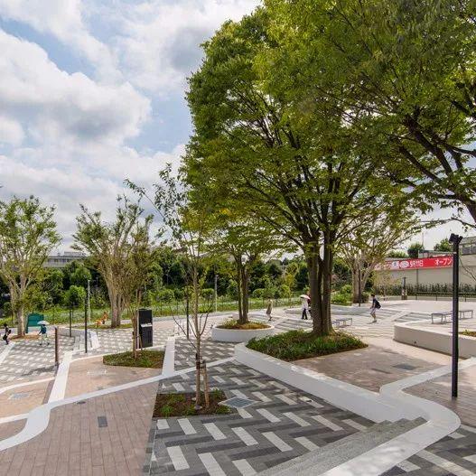 树池的配置方法和设计形式_36