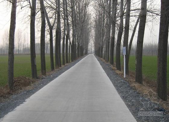[河南]中央投资农村公路工程监理规划