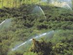 节水灌溉示范项目设计