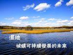 湿地,城镇可持续发展的未来