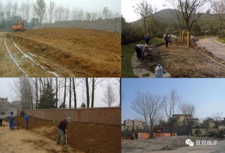 从图纸到施工|景观绿化营造工艺①