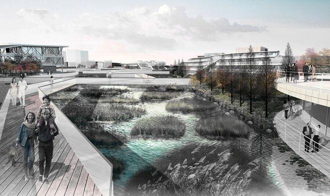 湿地公园景观设计要点_15
