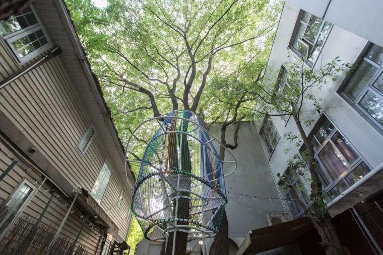 当房子遇上树,这群设计师要上天_6