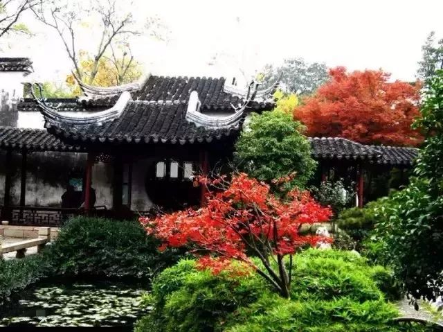 有一种建筑,叫中国古园林建筑系列之苏派园林建筑_3