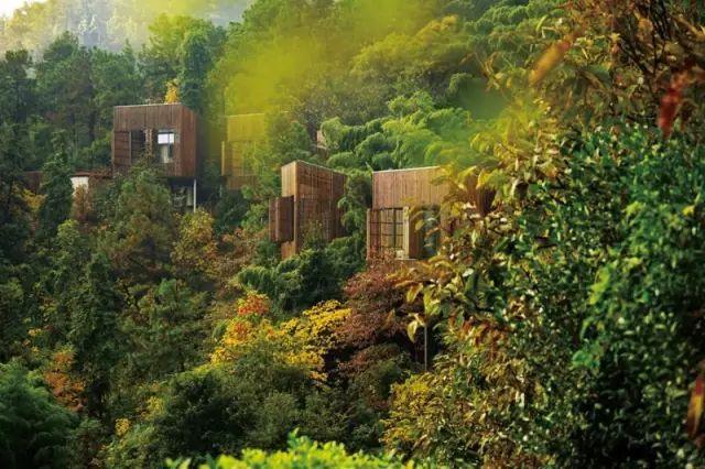 中国最受欢迎的35家顶级野奢酒店_110