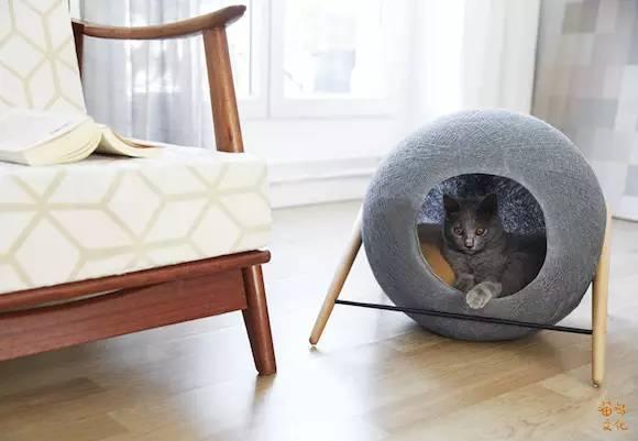 非常走心的猫建筑_1