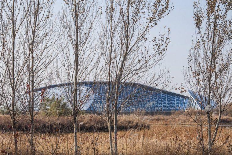 黑龙江黑瞎子岛北大荒现代生态园