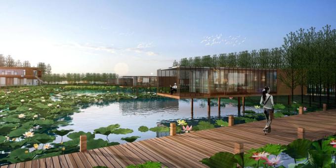[河南]滨湖郊野生态避难型森林公园景观设计方案_1