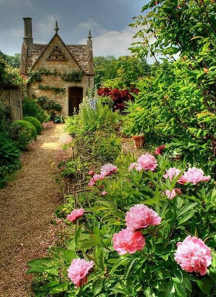 你真正需要的,也许只是一个小院,看繁花爬满篱笆_18