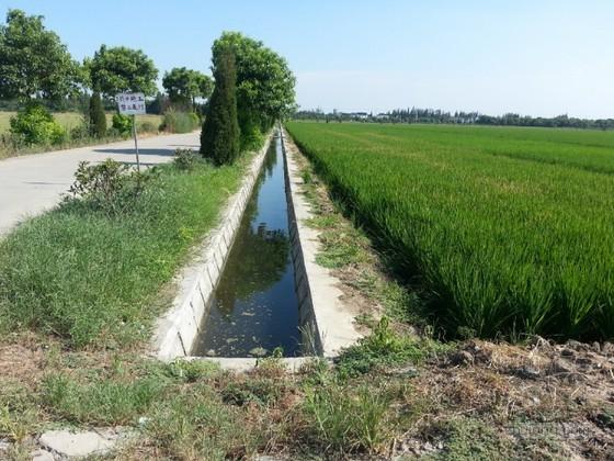 600亩蔬菜基地小型农田水利项目实施方案