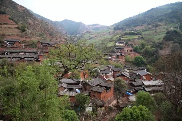 中国最美五十家民宿院子_55