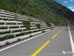 道路边坡绿化设计