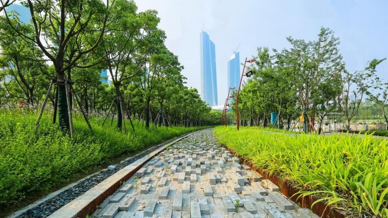 南京国际青年文化公园-3