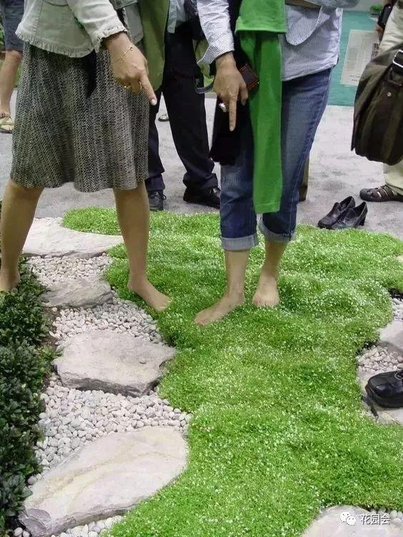 花草与石板的关系•花园小径_5