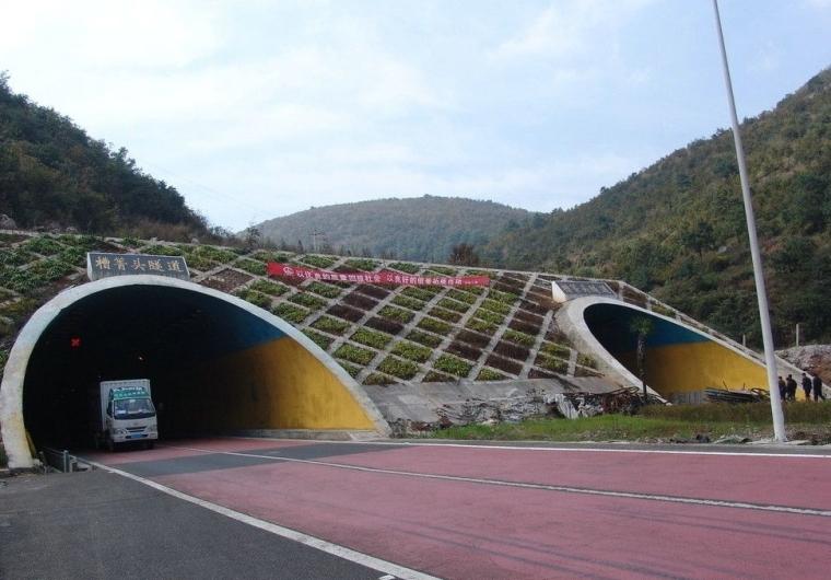 福建高速公路隧道安全管理与文明施工标准化指南(word,10页)