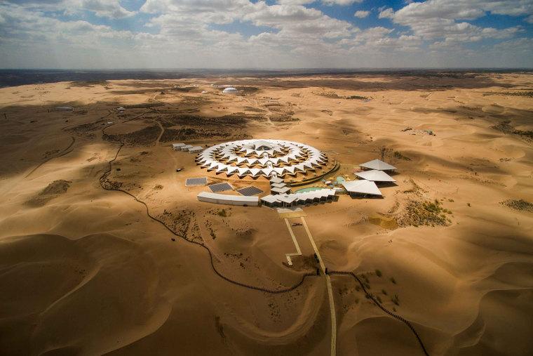 在旱地中盛放的白莲花,内蒙古响沙湾沙漠莲花酒店