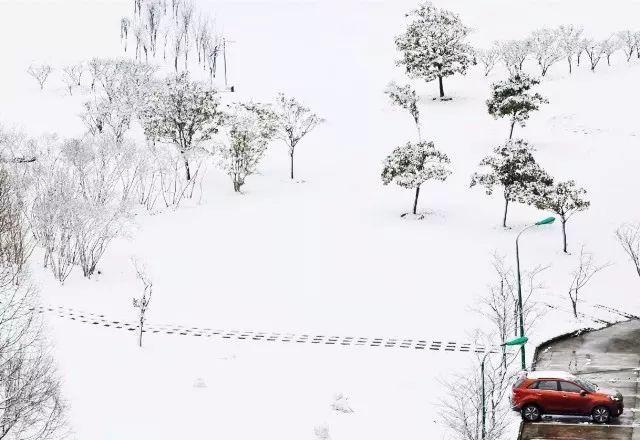 雪景大合集,看看你最喜欢哪里?_12