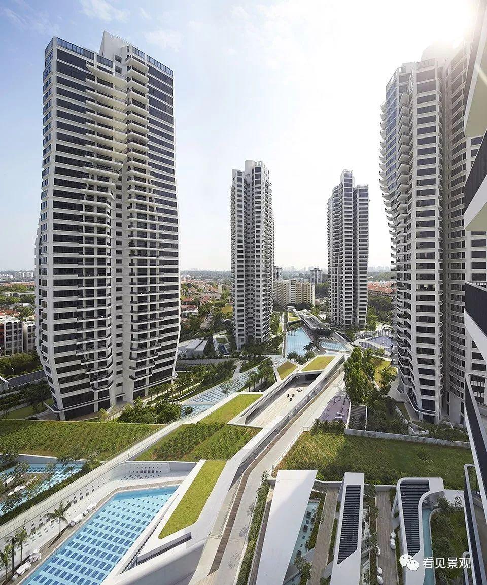 这些奇特的项目只有在新加坡才能看到