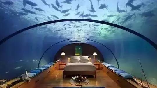 #每日毒评#世界上海拔最低的酒店_17