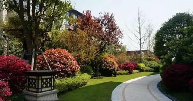 景观中的园路设计_13